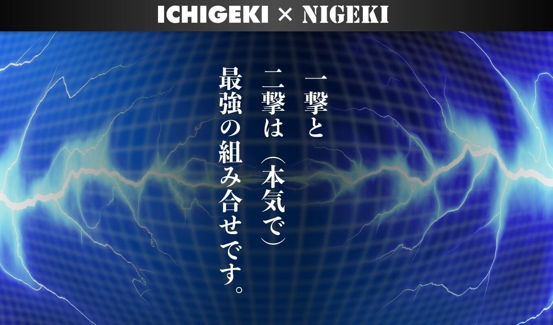 斎藤忠義 さいとうただよし) ICHIGEKI&NIGEKI 一撃&二撃 口コミ 評判 評価 詐欺 怪しい レビュー 相談 本当